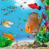 Задания логопеда по лексической теме «Рыбы»
